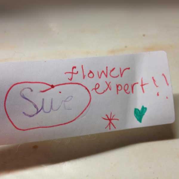 flower-expert