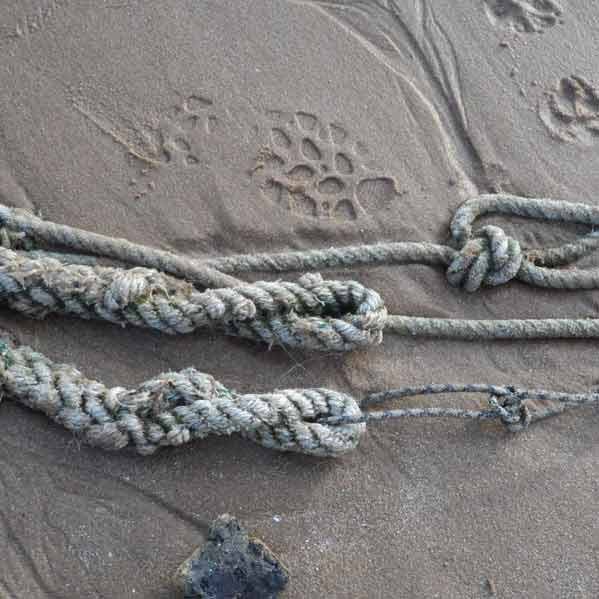 sand-and-rope